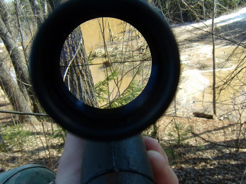 охота на ондатру