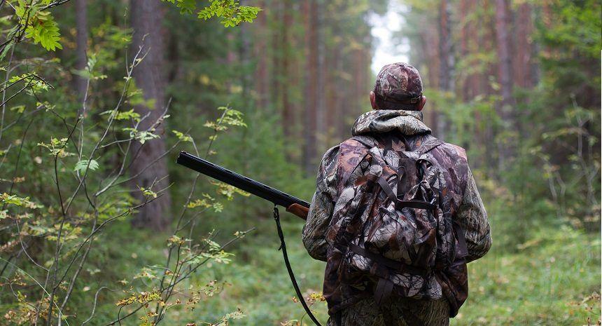 рация для охоты