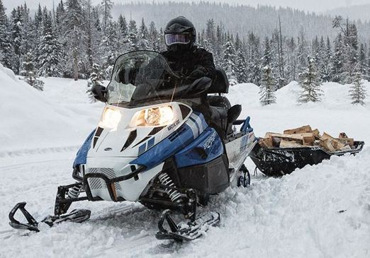 Снегоход Arctic Cat Bearcat Z1