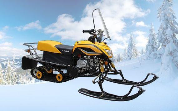Снегоход Irbis Dingo T125