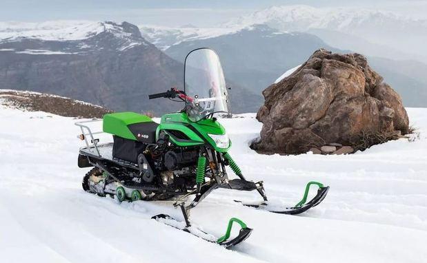 Снегоход Irbis Dingo T150